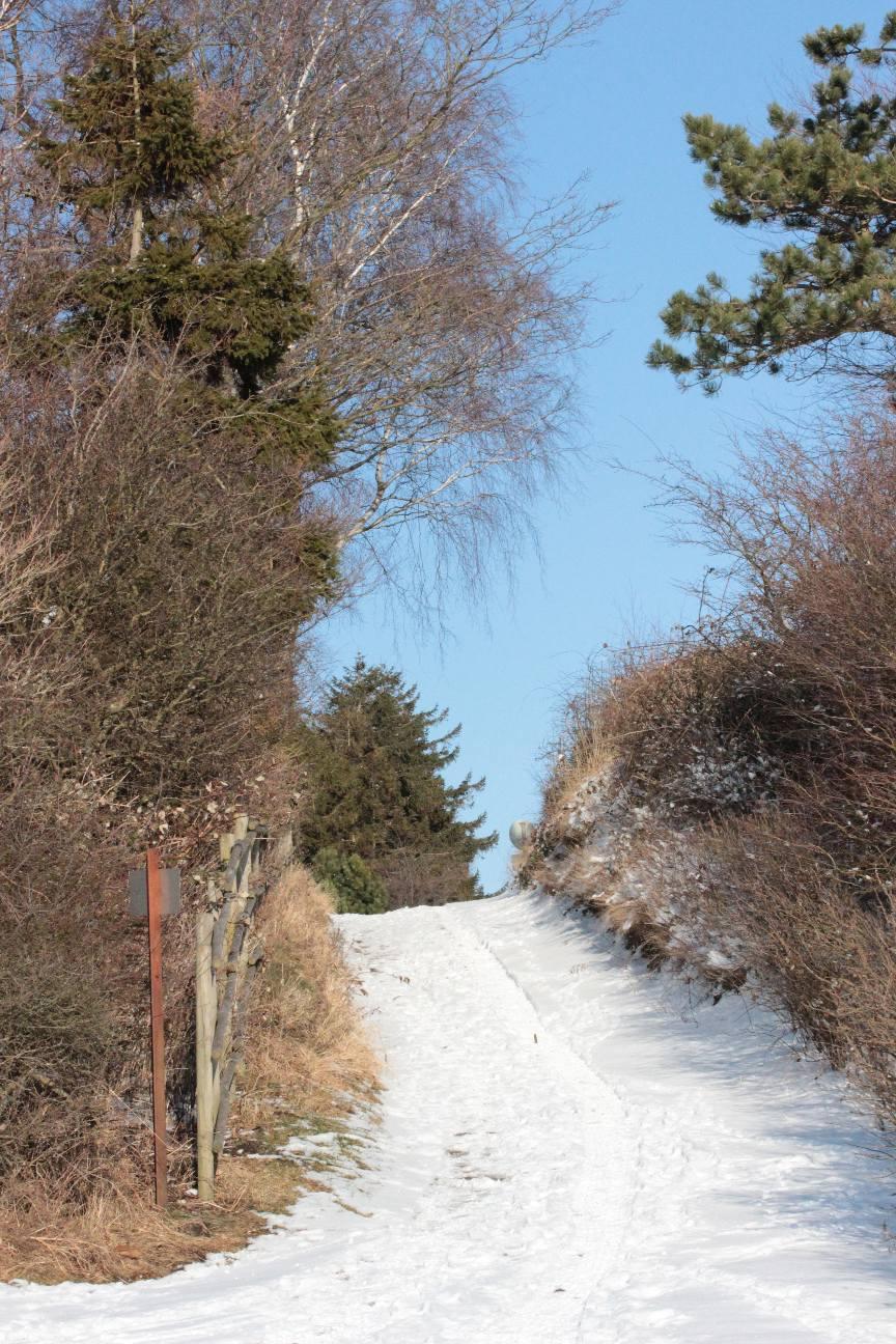 Blandet vinter marts 13 028